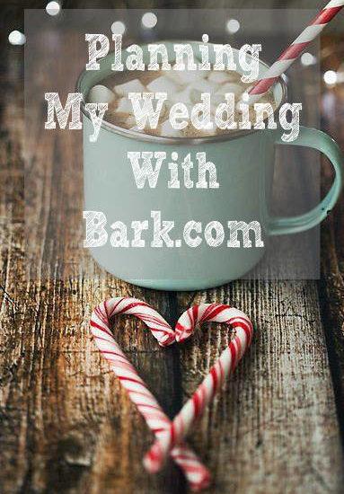 Bark.com review